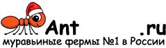 Муравьиные фермы AntFarms.ru - Подольск